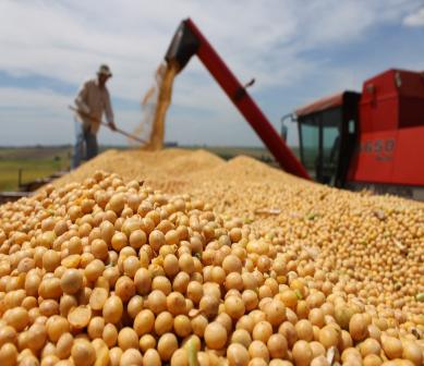 Economía y Mercados Agropecuarios