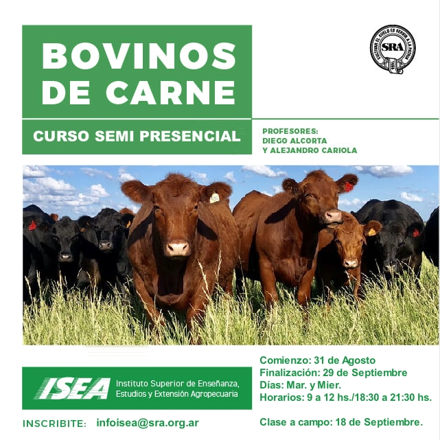 Producción Bovinos de Carne